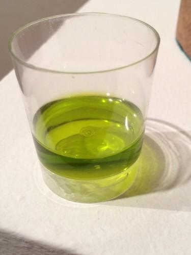 """La DO """"Sierra de Segura"""" promocionará su aceite de oliva de recolección temprana a través de catas"""