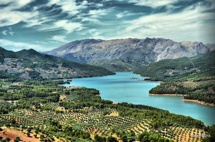"""La Denominación de Origen """"Sierra de Segura"""" organiza una sesión informativa de ayudas agroambientales a olivar de montaña"""