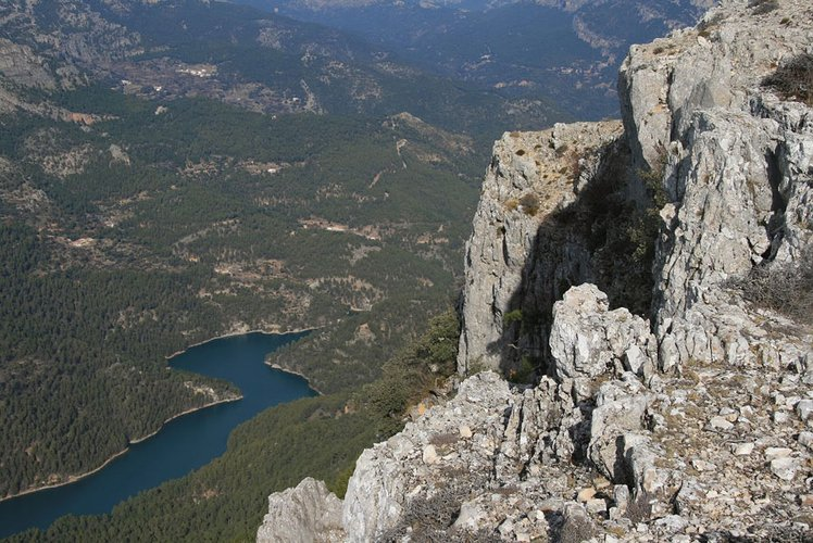 "La DO ""Sierra de Segura"" cuenta con la mayor superficie de olivar integrado en un Parque Natural, más de 16.000 hectáreas"