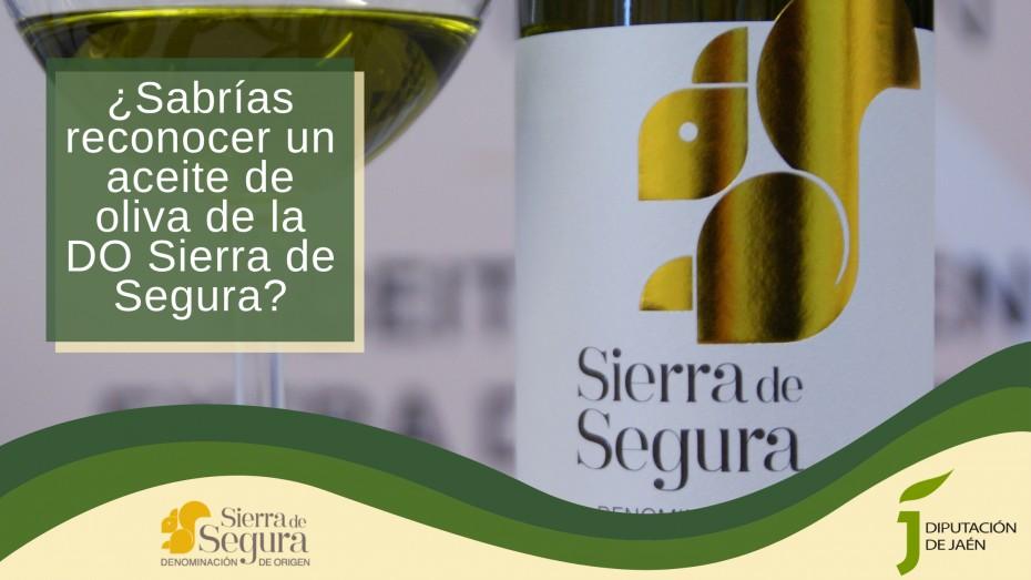 ¿Sabrías reconocer un aceite de oliva Denominación de Origen (DO) Sierra de Segura?