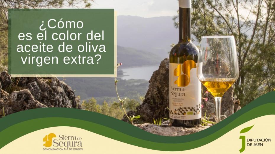 ¿Cómo es el color del aceite de oliva virgen extra?