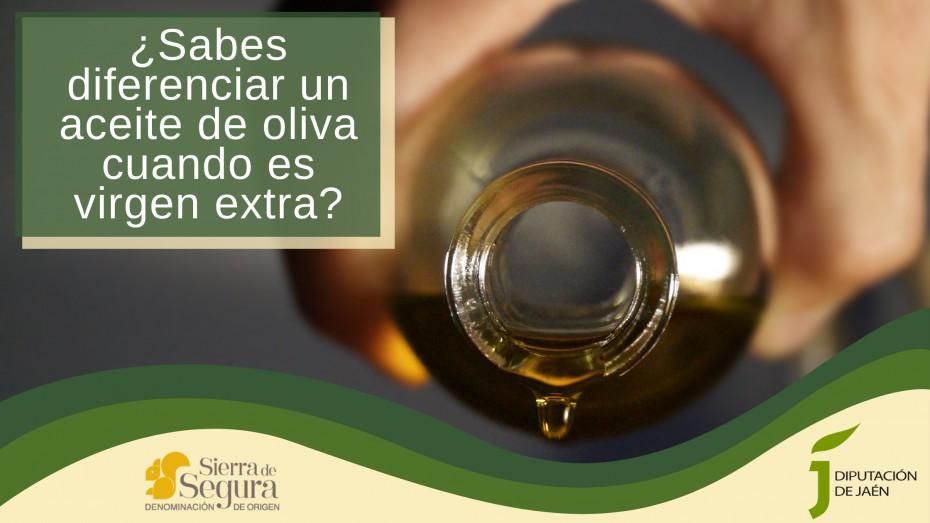 ¿Sabes diferenciar un aceite de oliva cuando es virgen extra?
