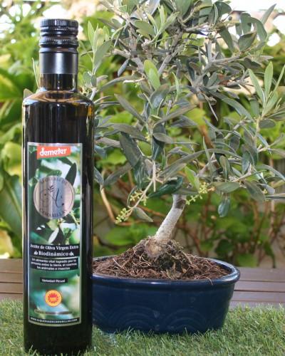 Alquería de Camarillas, aceite con doble certificación Biodinámico  y D.O.P Sierra de Segura