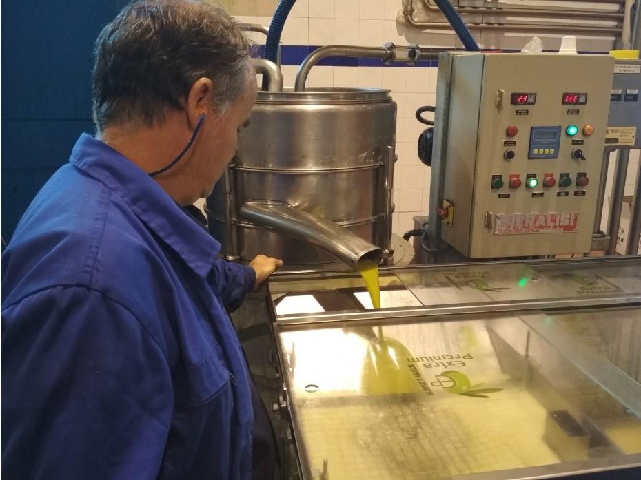 La Denominación de Origen Sierra de Segura comienza la elaboración de sus aceites en la campaña 17-18